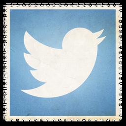 Twitter_256x256x32